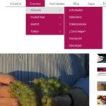 Diseño web Maratón del vino