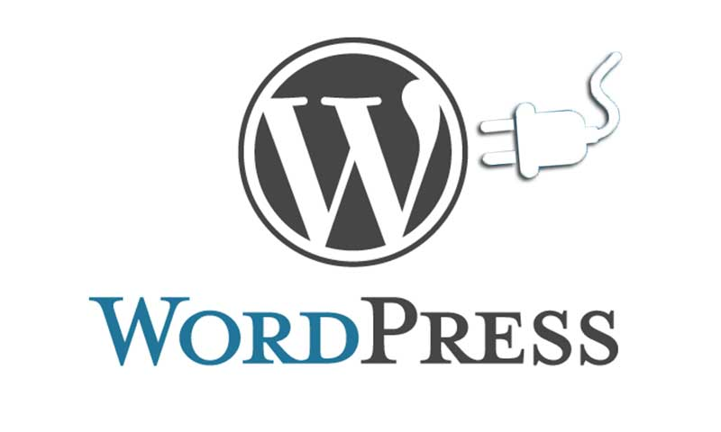 Plugins de seguridad imprescindibles para Wordpress